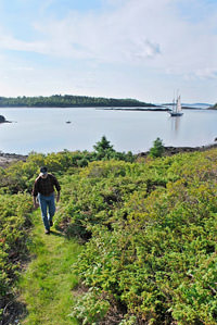 An afternoon hike on calderwood Island in Penobscot Bay
